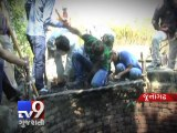 Forest officers rescue leopard from well in Junagadh - Tv9 Gujarati