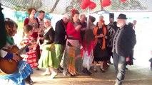 Het huwelijk van Maarten en Zerline 22: Het lied van de Stam