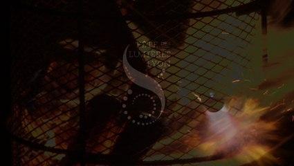 Fête des Lumières 2014 - Teaser #01