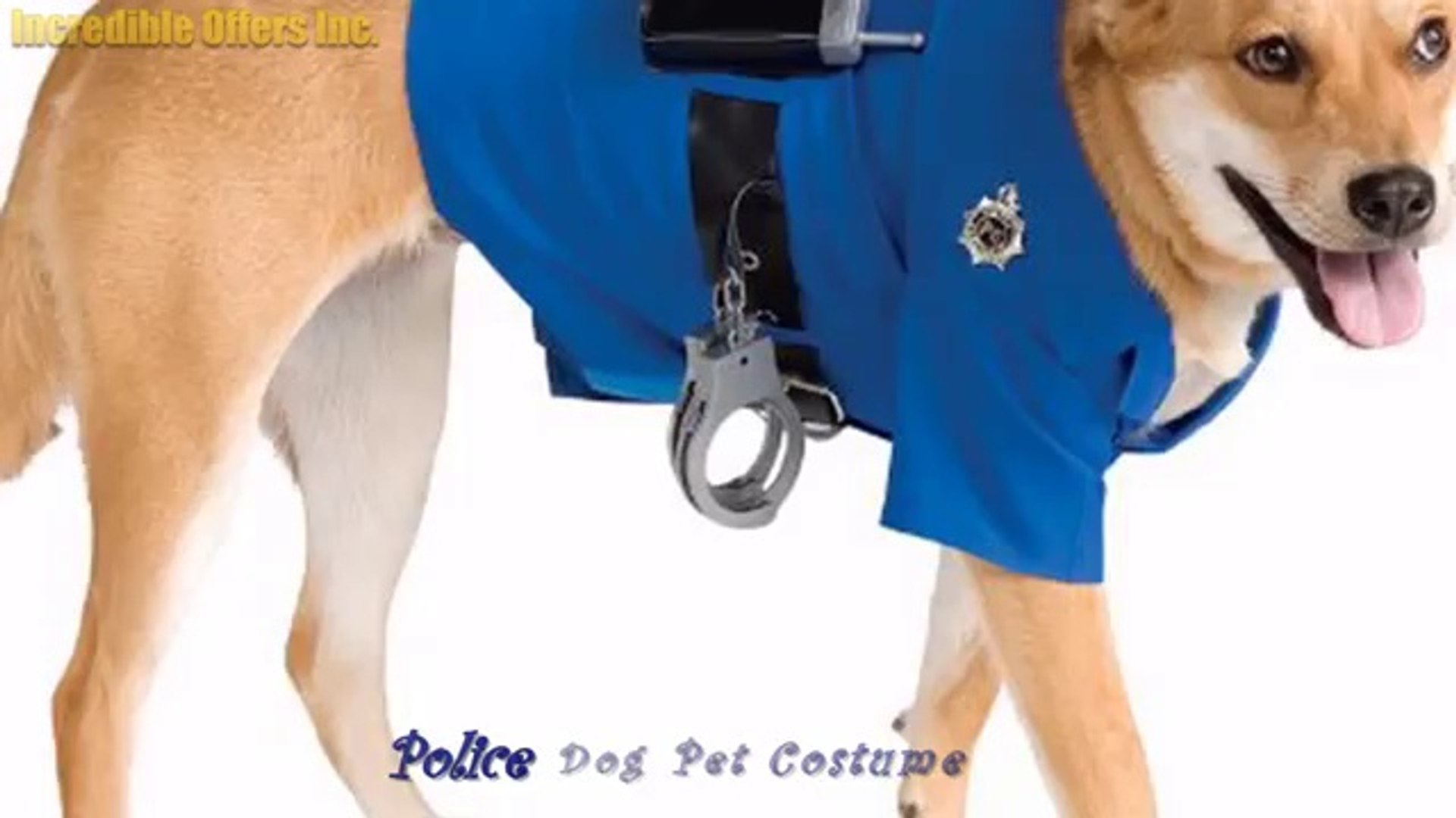 Pets Halloween - Best-Selling Pet Costumes