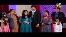 Shab e Zindagi Episode 15 HUM TV Drama