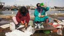 Voyager à Essaouira au Maroc - Blogtrip blog voyage