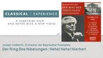 Richard Wagner : Der Ring Des Nibelungen : Hehe! Hehe! Hierher!