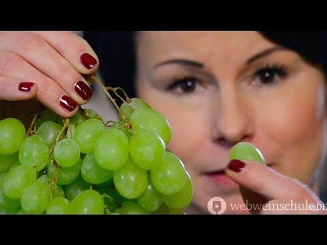 Weinschule Folge 2: Wie entsteht Wein?