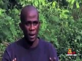 Are Dinosaurs Still Alive in African Jungle Today  Full Documentary