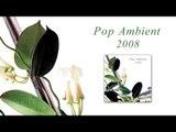 Ulf Lohmann - Kristall 'Pop Ambient 2008' Album