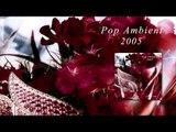 Gas - Pop 'Pop Ambient 2005' Album
