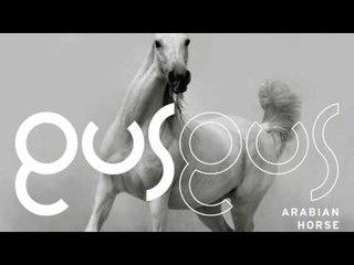 GusGus - Benched 'Arabian Horse' Album