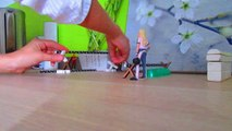 Chevaux schleich - Cours de saut 2