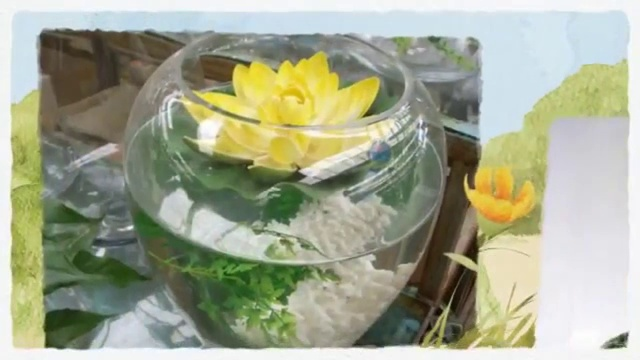 Easy Diy Aquaponics Money Back Guarantee