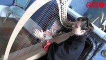 Lidwine en concert dans le manège du haras de Saint-Lô