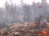 Bodrum'da çöp yangını ormana sıçradı