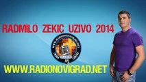 Radmilo Zekic Uzivo 2014 - Sam Kroz Zivot Ne Mogu Dalje