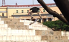 DC SHOES WES KREMER EXTRA CRUSTY