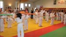 Ennery stage judo toussaint 1er partie