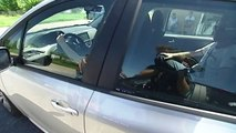 La réforme du permis de conduire a du mal à passer