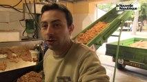 VIDEO. Fête de la pomme à Neuvy-St-Sépulchre : au paradis des gourmets