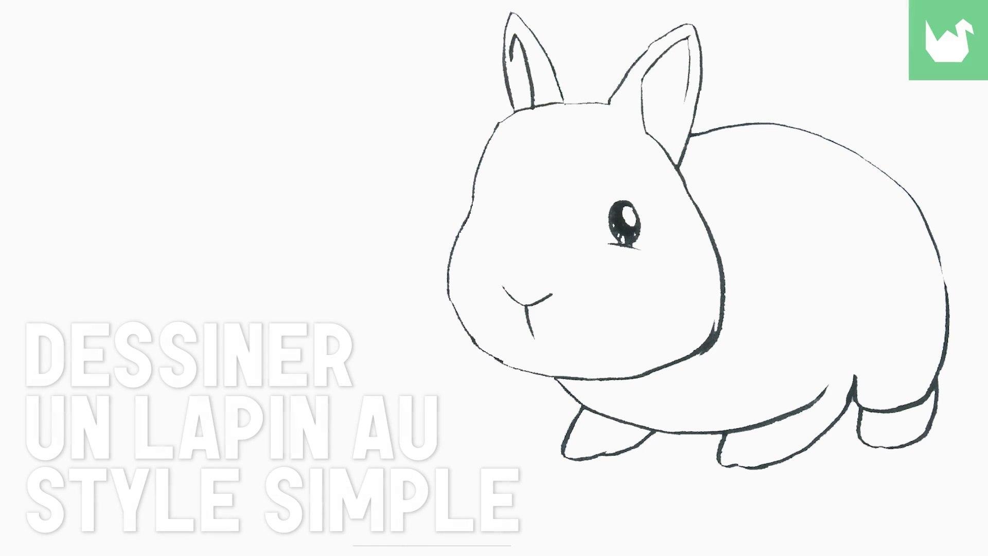 Étonnant Dessin : Dessiner un lapin (facile) - HD - Vidéo dailymotion RN-07