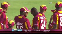 Kemar Roach  BEAMER  to Brett Lee    PLUS Dussey Wicket  amp  Binga Smashing Roach   4th ODI 2012