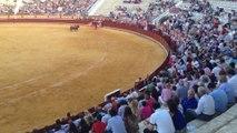 Puerto De Santa María 17/07/2014. Padilla, El Fandi y Iván Fandiño con toros de Nuñez Del Cuvillo