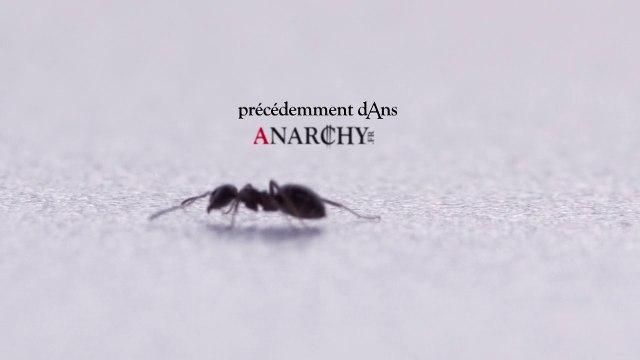 Anarchy : les jours d'avant - Previously #1
