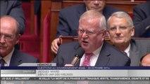 Jacques Myard, Emmanuel Macron : professions règlementées