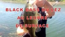 Black bass du lez au leurre USAMI par Europêche34