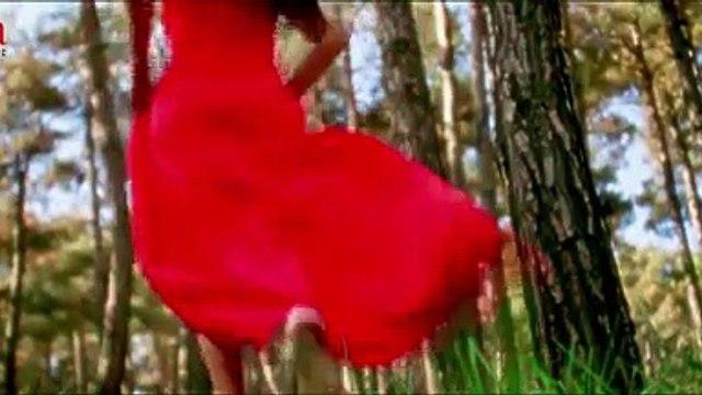Todi Na Dil _Shahid Mallya _Movie Jatts In Golmaal