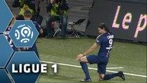 But Edinson CAVANI (60ème) / FC Lorient - Paris Saint-Germain (1-2) - (FCL - PSG) / 2014-15