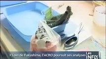 ACRO - Analyses radioactivité échantillons provenant du Japon - Normandie TV 20/07/2011