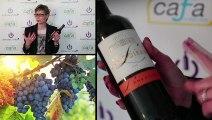 Château Langoiran Cuvée prestige 2010 - Dégustation Avenue des vins