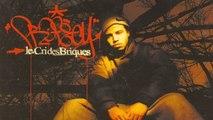 Profecy - 44 Bars - Le Cris Des Briques
