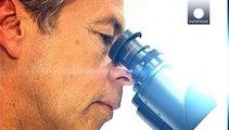 Lungenkrebs: Französische Wissenschaftler entwickeln Bluttest