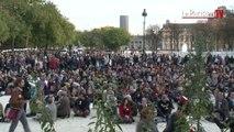 Sit-in pacifique à Paris en hommage à Rémi Fraisse