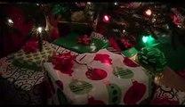 A Merry Friggin Christmas Trailer.Robin Williams Joel Mchale In A Merry Friggin Christmas