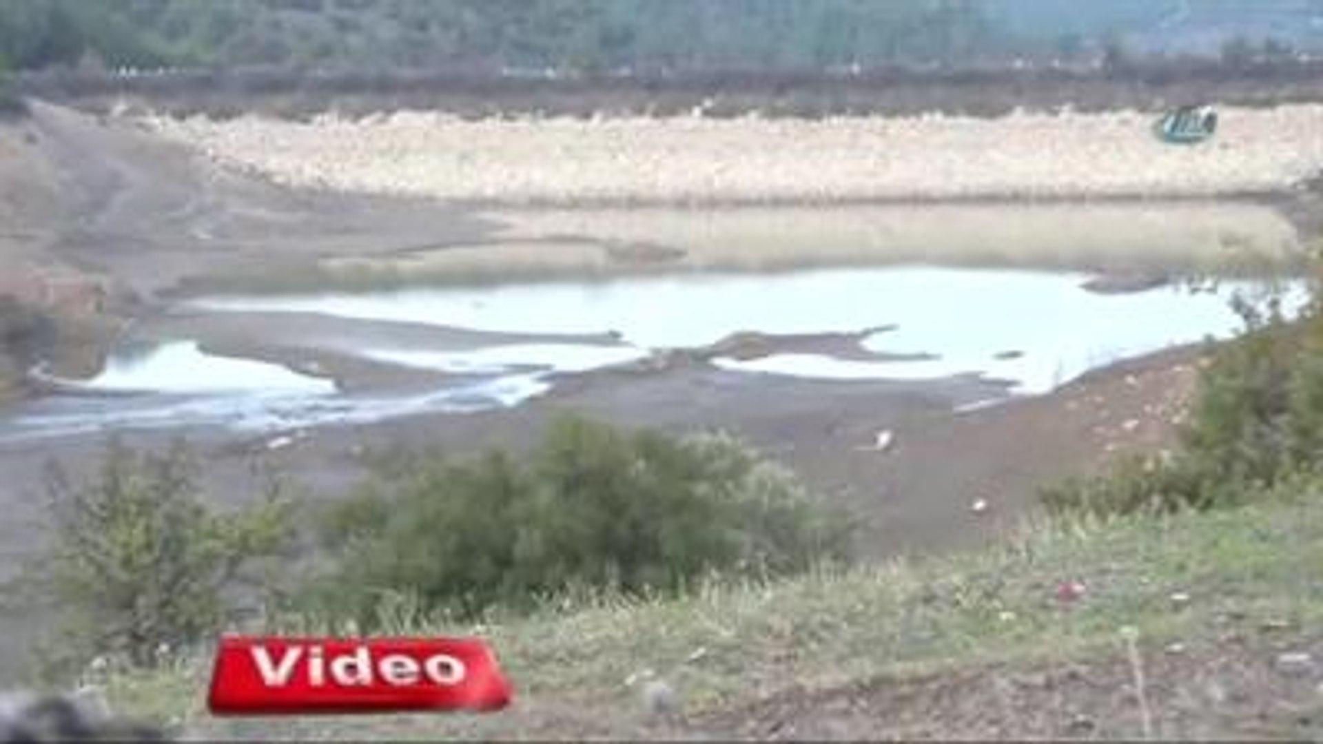 Bu Barajın Sadece Balıklara Faydası Var!