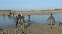 Reportage : 32ème fête du poisson à l'étang de  Lachaussée