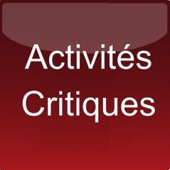 MdC Séminaire Criticité BIA