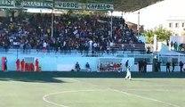 Tifo Ultras Green Masters- Ultras Verde Cavallo