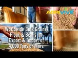 Acquire Bulk Soybeans for Importing, Soybeans Importers, Soybeans Importer, Soybeans Imports, Import, Import