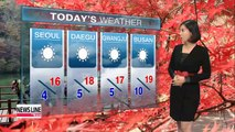 Cold morning turns to mild afternoon under plenty of sun