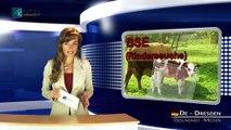 2014-11-11_Ebola, ESB, grippe aviaire, grippe porcine - l'œuvre de l'OMS et  des médias -Klagemauer TV