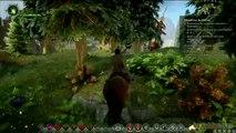 Gaming live Dragon Age Inquisition - L'Inquisition en mode exploration 1/3 PC