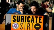 SURICATE - Siri