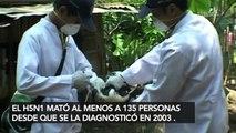 Las peores epidemias del mundo en los últimos tiempos - 15POST
