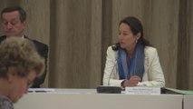 """Ségolène Royal réunit la commission spécialisée """"Santé Environnement"""" en vue de la Conférence environnementale"""