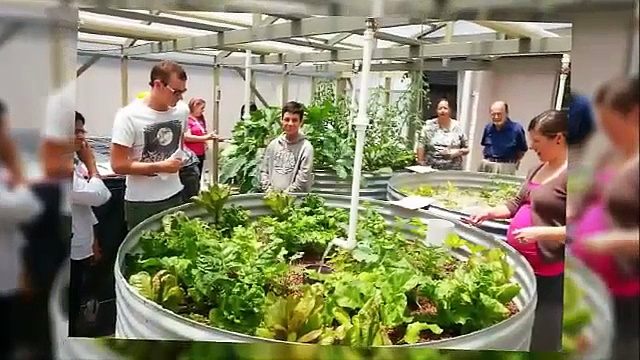 Aquaponic Gardens, Home Aquaponics, Aquaponics 4 You, Aquaponics For Profit, Aquaponics Usa