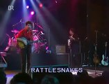 Lloyd Cole & The Commotion - Rattlesnakes (live)