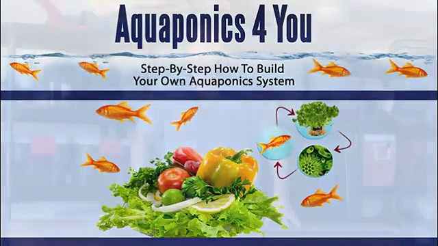 Aquaponics 4 You — Step By Step How To Build Your Own Aquaponics System