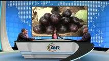 AFRICA NEWS ROOM du 14/11/14 - Congo - Le désengorgement de Brazzaville en question - partie 3